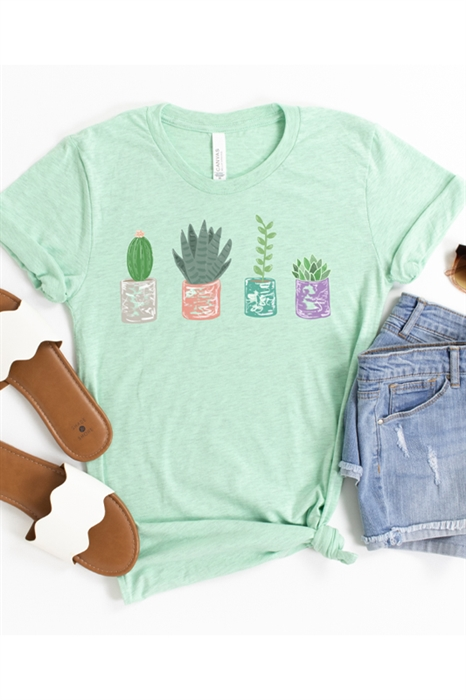 Picture of Sweet Succulents Graphic Tee